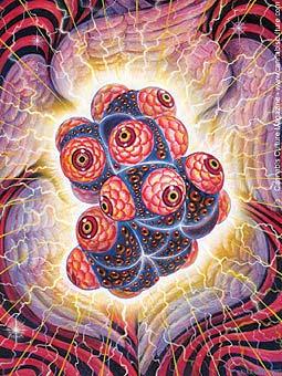 2420-DMT_spirit-molecule